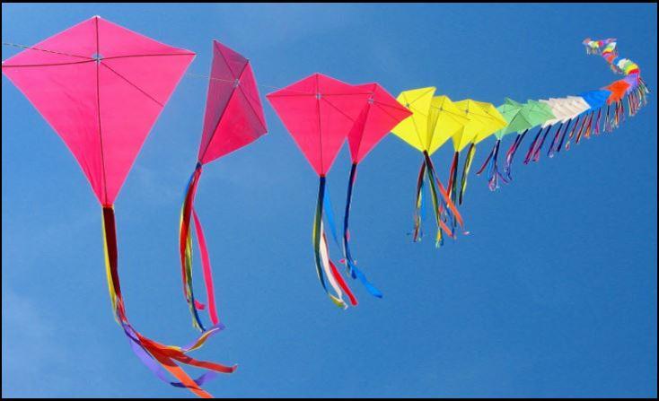 49th Annual Great Delaware Kite Festival