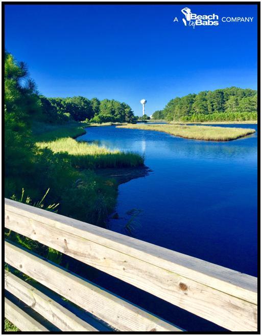 Why We Live Here . . . Fred Hudson Trail ~ Bethany Beach